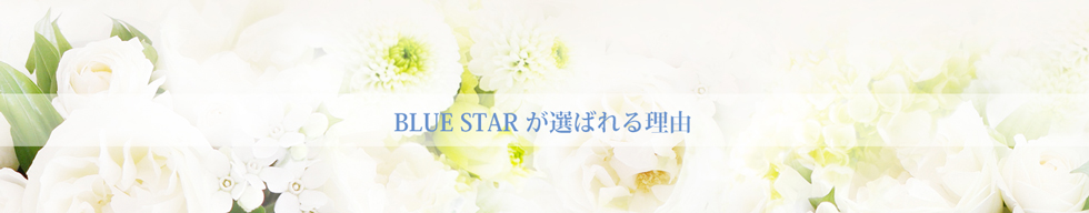 BLUE STARが選ばれる理由